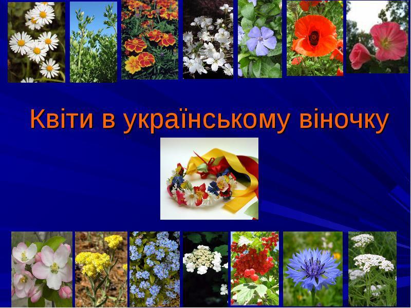 В українському народному костюмі втілилася історична доля народу, його культура і традиції