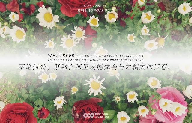 月明洞,春天,花开,五颜六色,体会,旨意,Joshua Jung, Providence, Wolmyeong Dong, Spring, flower blossom, realize, will