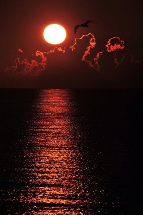 جمال الليل