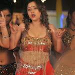 Swetha Basu Hot Photos In Intelligent Idiots Movie