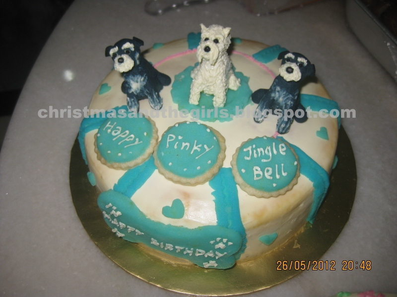 Cake Images With Name Pinky : Four Miniature Schnauzer Girls and A Maltese Boy: We Are Two Today!