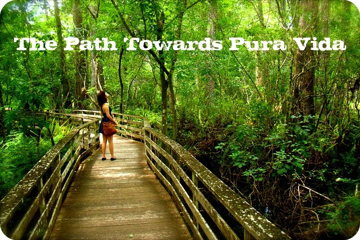 The Path Towards Pura Vida
