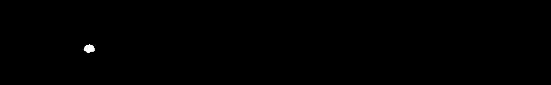 Wanderbelle