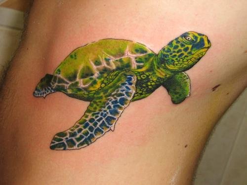 Sea Turtle Tattoos