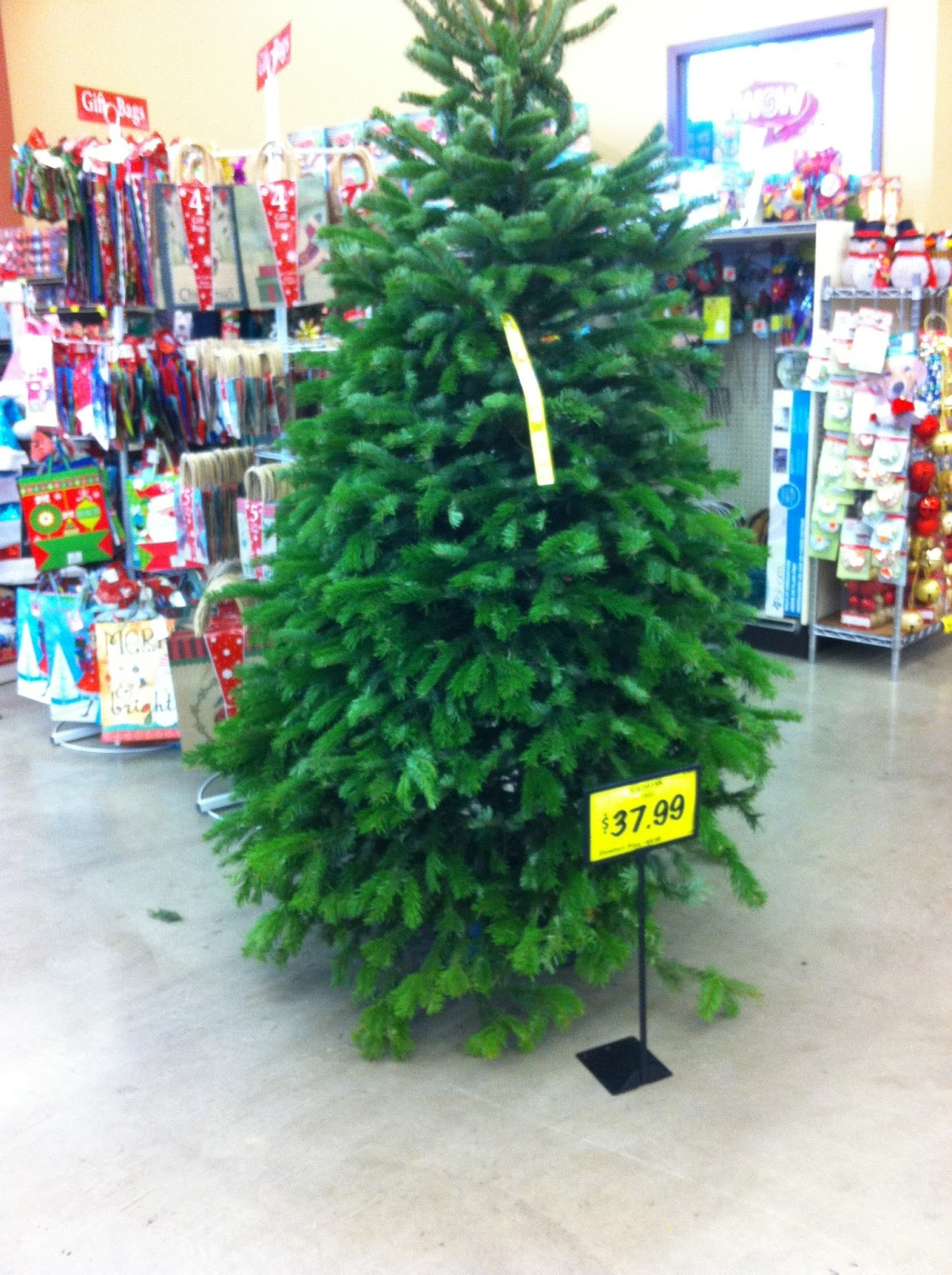 Kennewick Grocery Outlet BLOG: Fresh Noble Fir Christmas Trees ...
