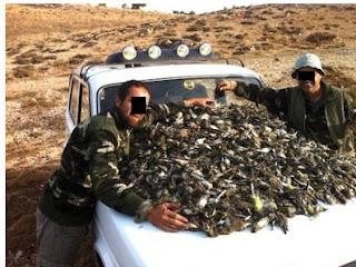 صورة لغلة صيادَي طيور تغضب عشاق البيئة في لبنان