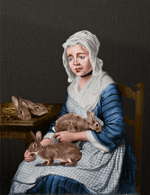 Rabbit Birth - Mary Toft