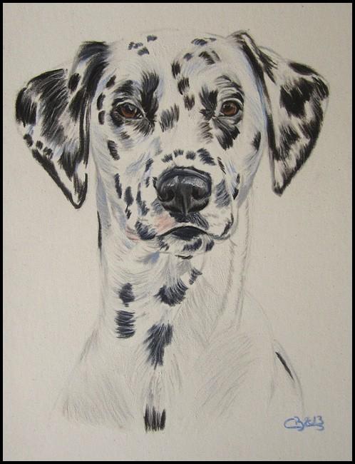 dessin de dalmatien