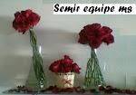 semir_equipe@hotmail.com