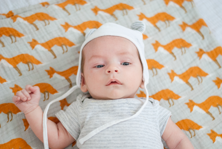 fox print baby blanket
