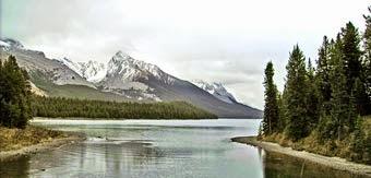 fliegenfischen in kanada