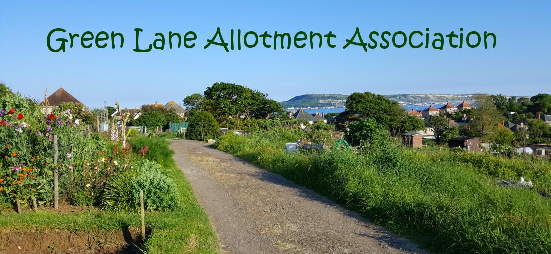 Green Lane Allotments Weymouth