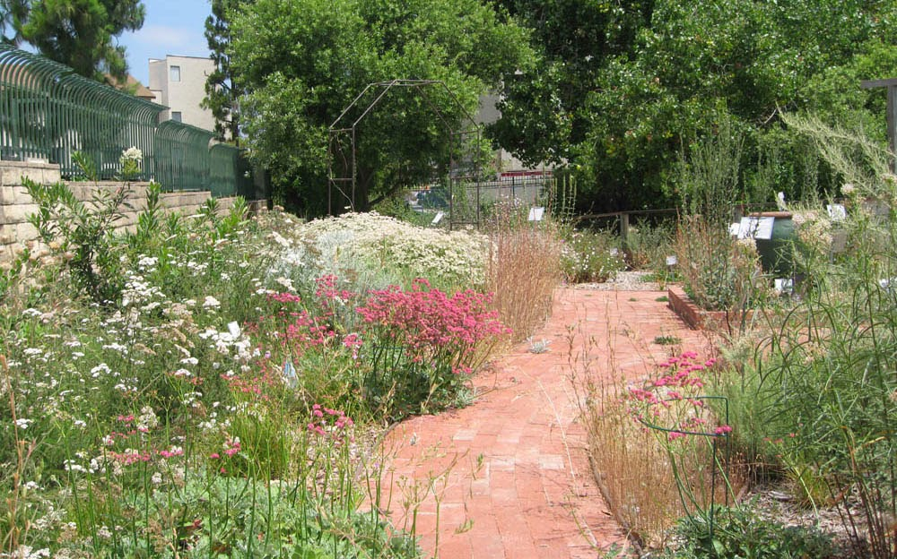 in the next few months youll be creating a design plan for your new garden this month we provide background information and apply some design basics to - Garden Design Basics