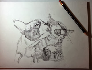 First dog kissing cat work in progress pencil drawing