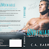 Cover Reveal: Undeniable (The Key West #4) by CA Harms