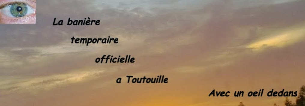 Mlle Toutouille a un blog