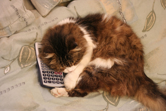 Cat and Calculator - Top View by Felix Idan from flickr (CC-NC-ND)