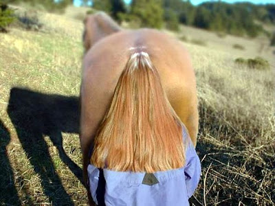 Coincidence photo horse and woman