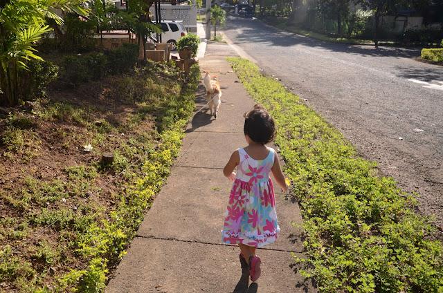 Kecil on the sidewalk following the Dog