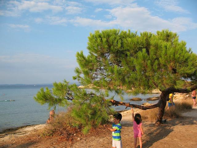 Karidi Beach Vourvourou Greece (Grecia)