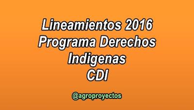 Lineamientos programa derechos indígenas CDI 2016