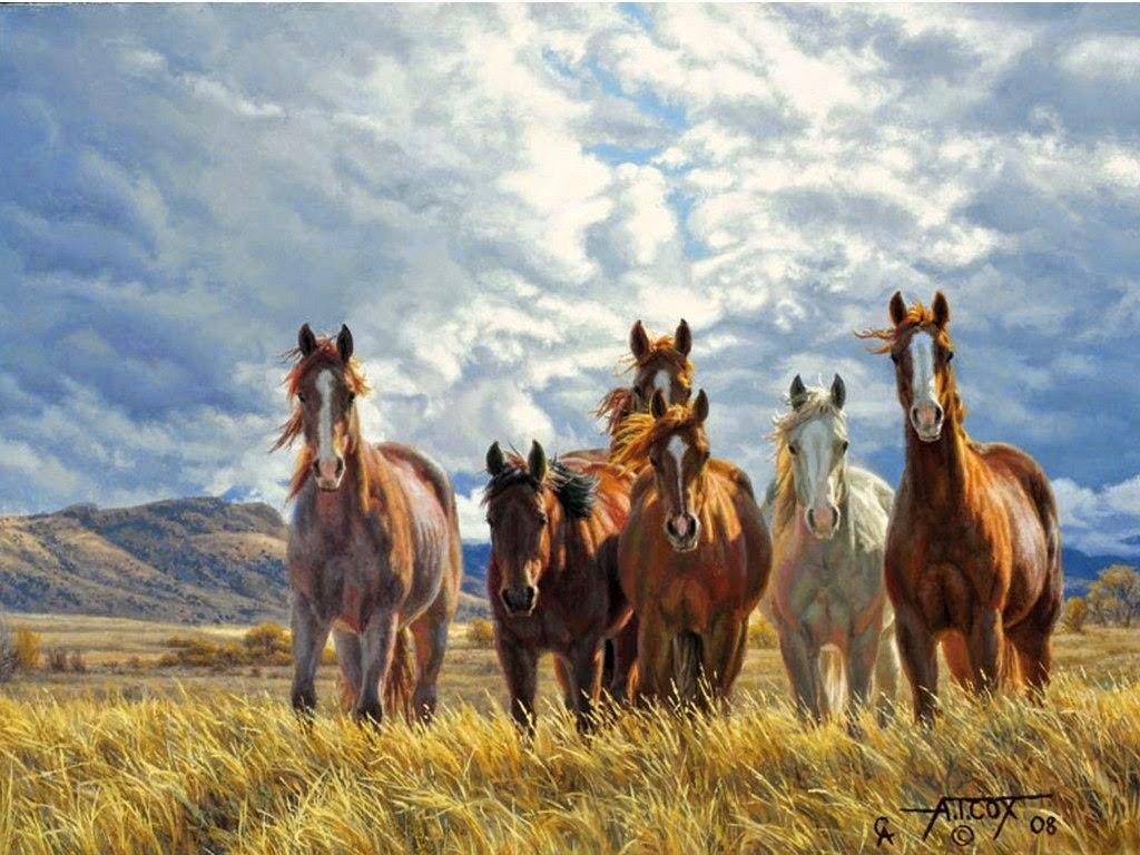 Y Horse Is Amazing Imágenes Arte Pin...