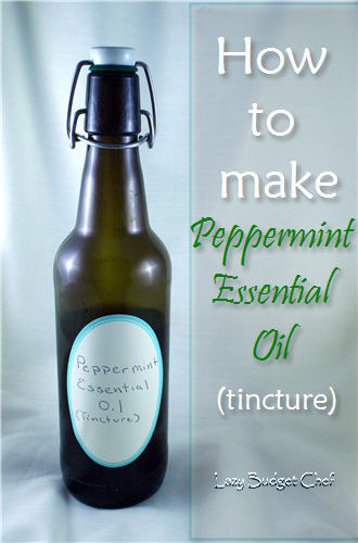 How to Make Peppermint Essential Oil (Extract)