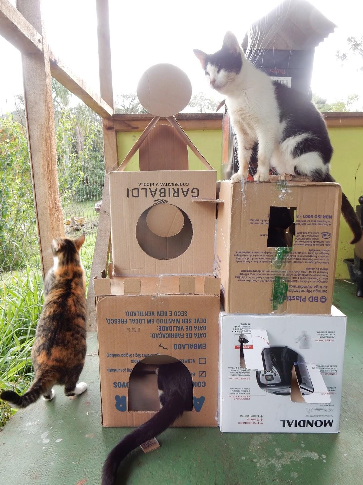 Se a minha bici falasse um projeto por m s castelo - Casa para gato ...