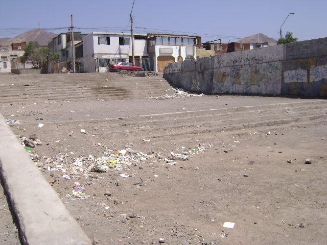 Canchas antofagasta s o s necesito que me arreglen for Vivero antofagasta