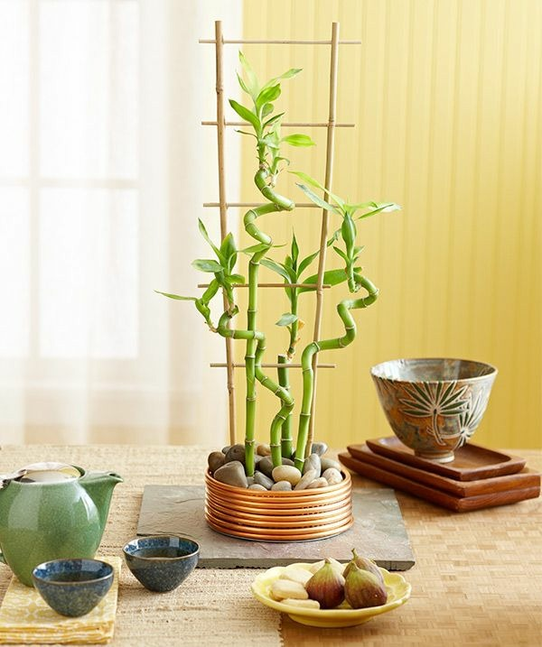 easy bamboo interior decoration.  bamboo pipe it is easy for our creations and one of them made plant decorative pedestal cheap easily obtainable also can beautify your plants BAMBOO VASE FLOWERS DESIGN BAMBOOS
