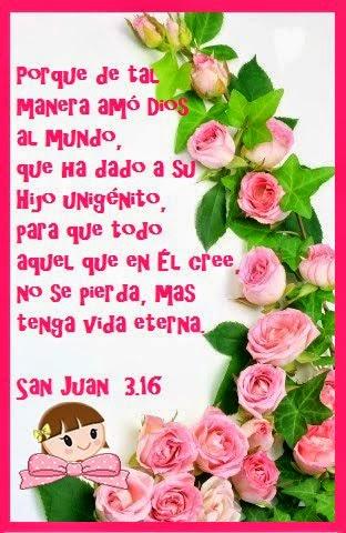SAN JUAN 3.16