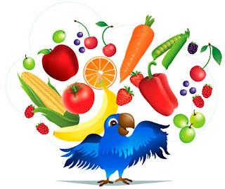 Copy-Kids Parrot Logo