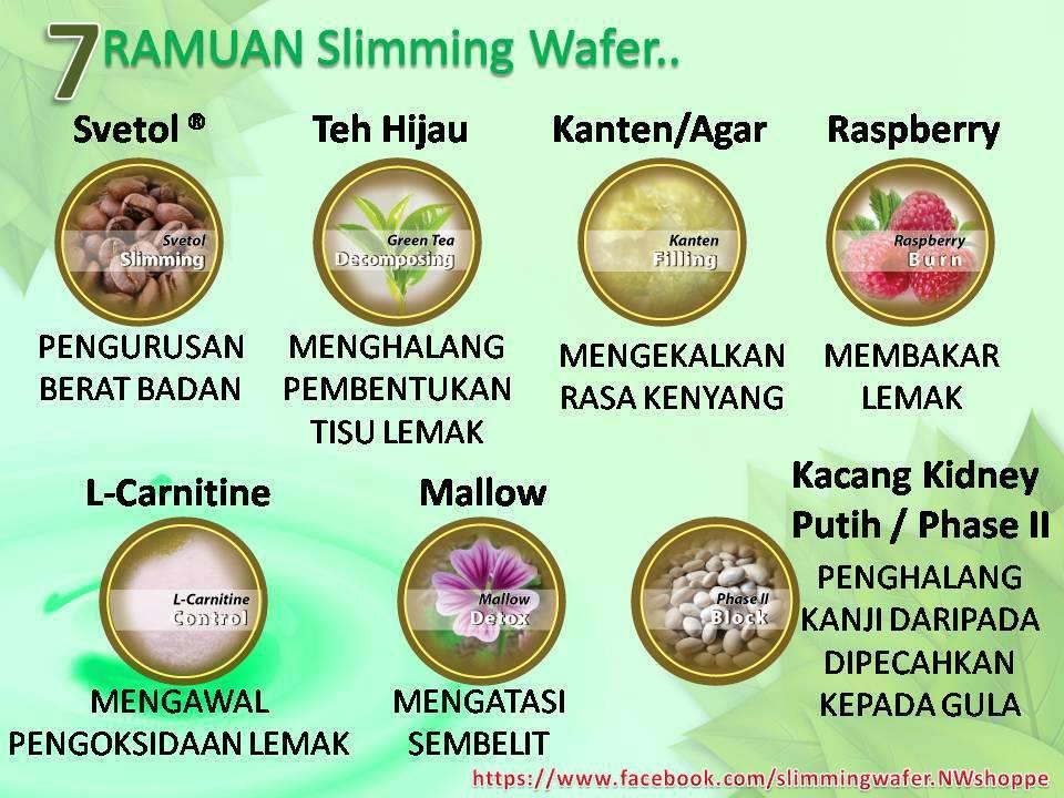 SLIMMING WAFER - cara diet yang sihat & mudah
