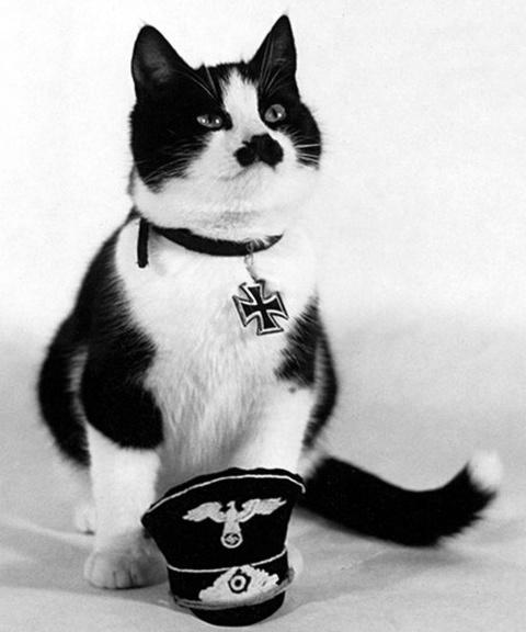 Nazi Hitler kat