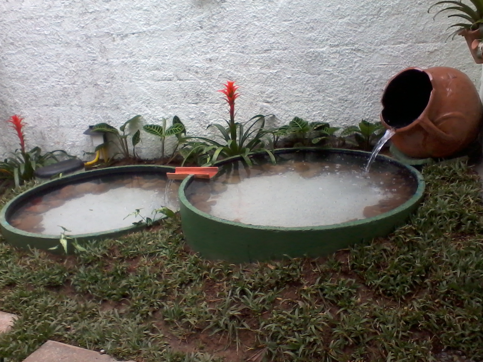 Simples assim tanque de carpas pronto for Como criar carpas en estanques