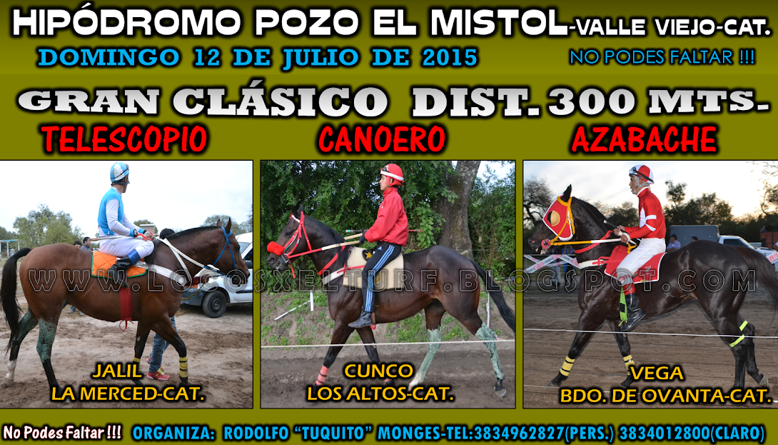 12-07-15-HIP. POZO EL MISTOL-CLAS.