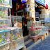 Qatar Live animal Selling area of Souq Waqif