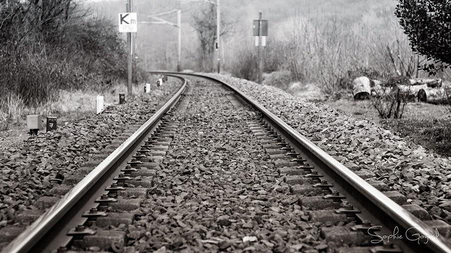 chemin de fer photographie