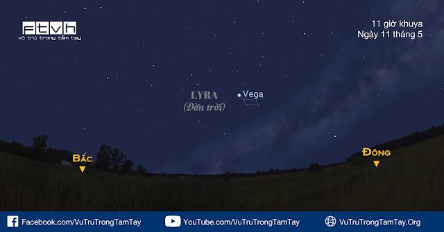 Quan sát sao Vega tối 11/5.