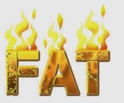 bakar lemak berlebihan dari tubuh badan shaklee shaina shop