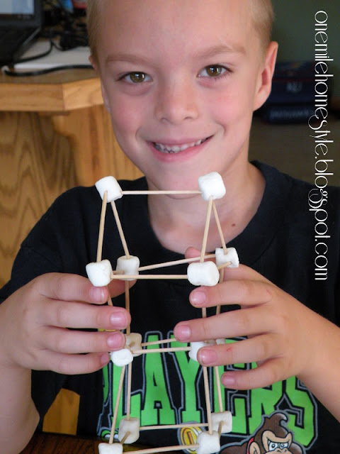 Finished marshmallow  and toothpick building