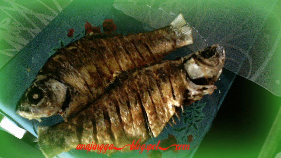 petua masak ikan banyak tulang