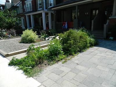 Paul Jung Toronto Gardening Services Leslieville front garden renovation before