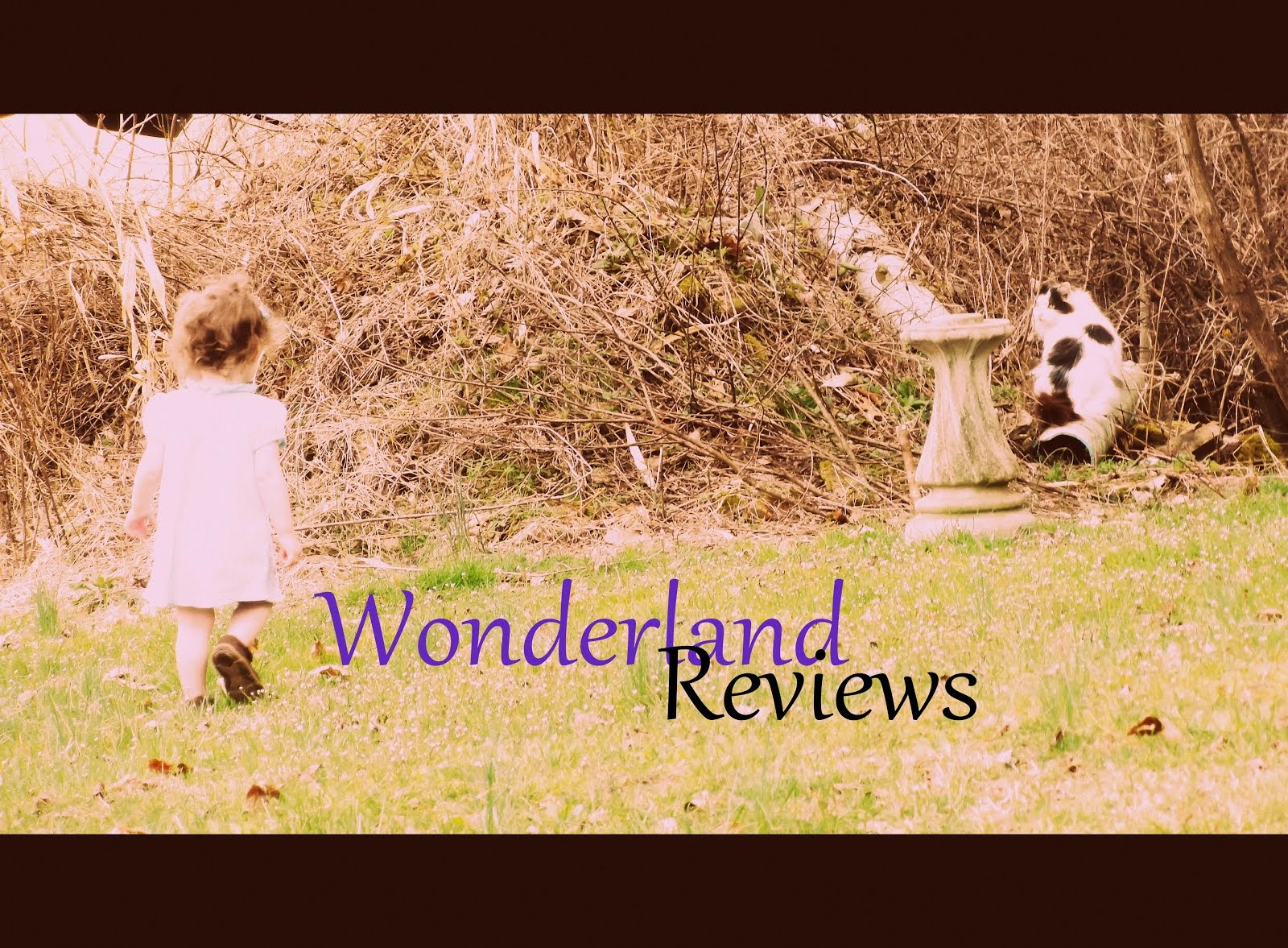 WONDERLAND REVIEWS