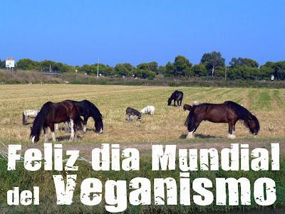 imagen dia mundial del veganismo 1 noviembre 07