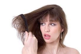 Rambut Panjang terurai Sehat