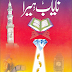 Nayab Hera Urdu Book By Saleem Rauf