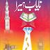 Nayab Hera Urdu Book By Saleem Rauf