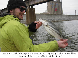 Today on the james wildlife of the james migratory fish for James river fishing