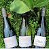 Jahrgangspräsentation - Weingut Wiesler